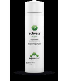 ACTIVATE (P) 350 ml