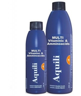 MULTIVITAMINIC & AMINOACIDS 250 ML AQUILI