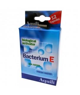 BACTERIUM E 12 CAPSULE AQUILI